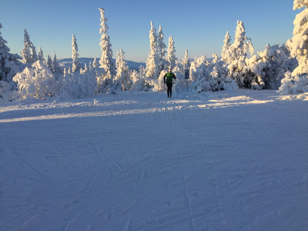 skidor vinter storhogna vemdalen