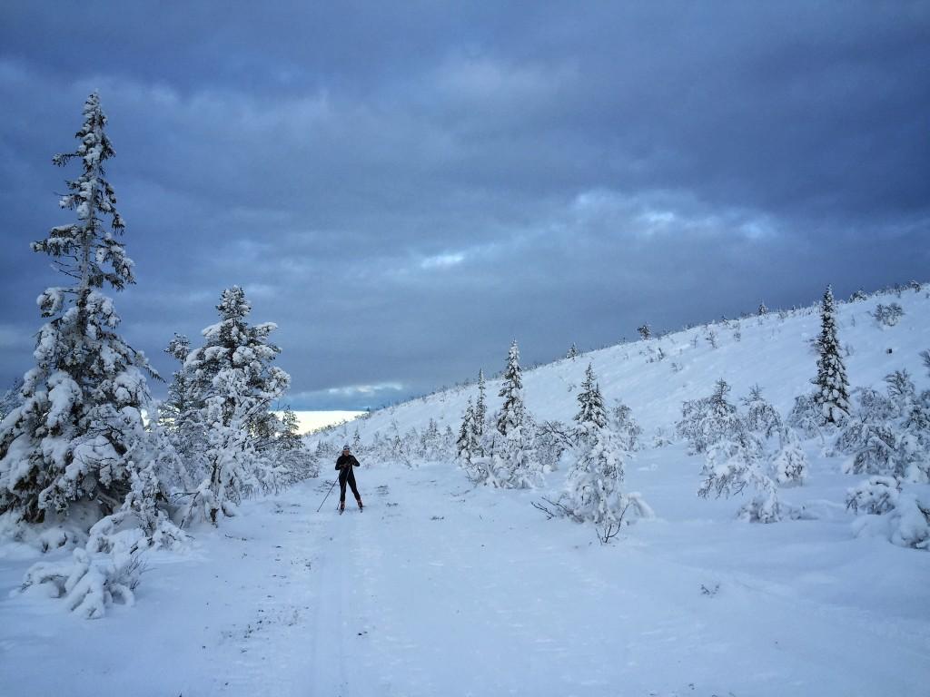 vinter skidor vemdalen
