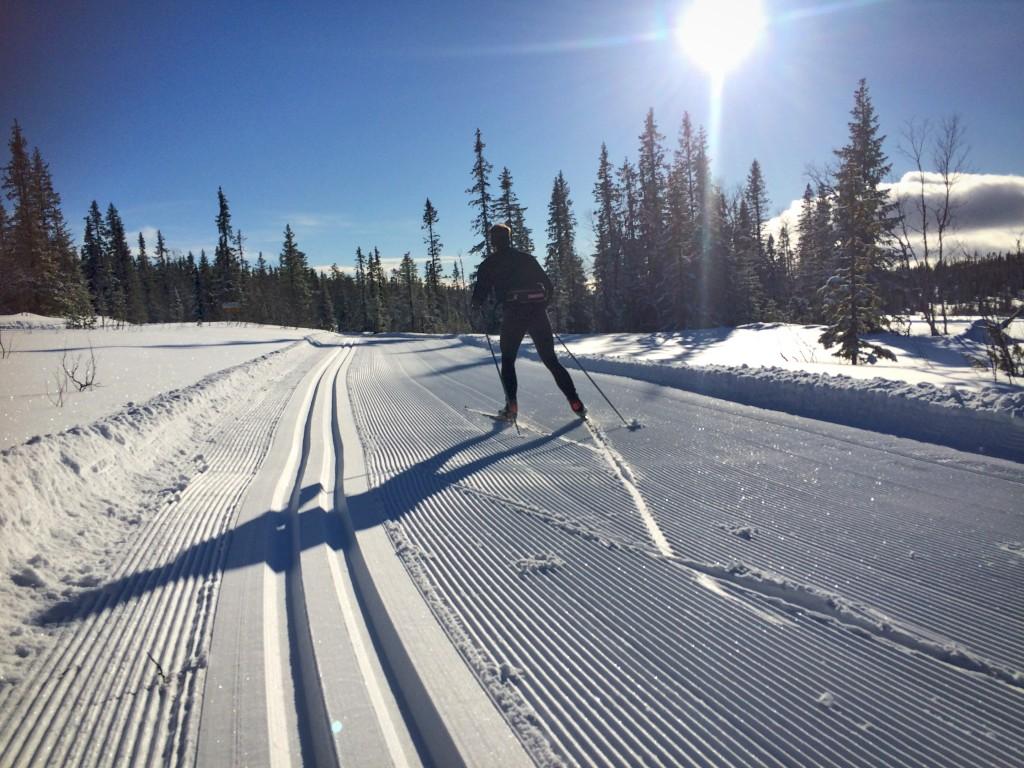 skidor vemdalen storhogna craft