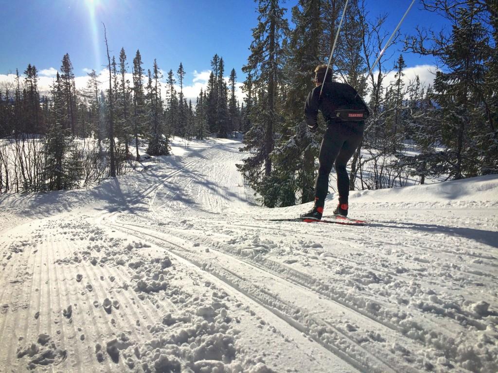 Skidor på vemdalsskalet