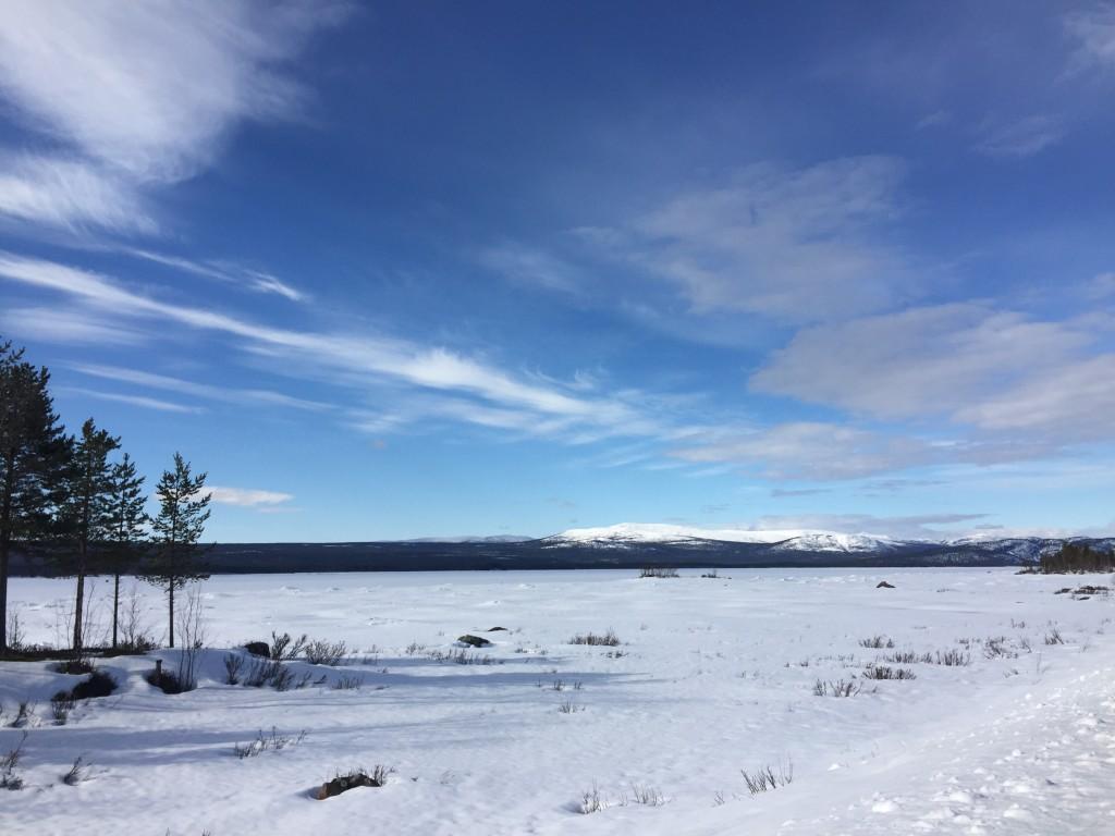 Nordenskiöldsloppet Jokkmokk