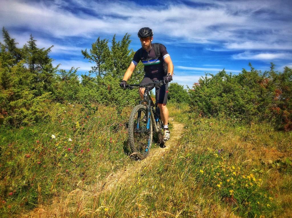 Sommar och cykling